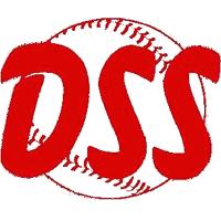 logo_dss